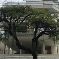 Prédio - Jardim Guanabara - Ilha do Governador